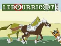 image du jeu LeBourricot.com