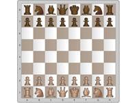 image du jeu Jouer aux echecs