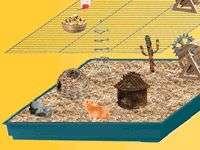 image du jeu Hamster Academy